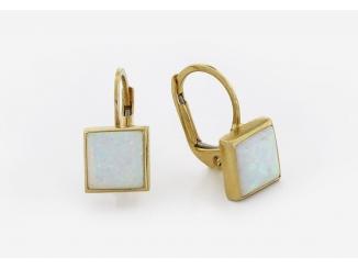 Zlaté náušnice DO20038